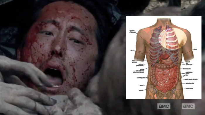the-walking-dead-glenn-anatomy1